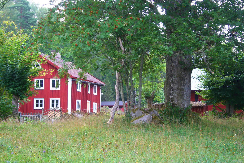 Ire Natur- och Kulturskola